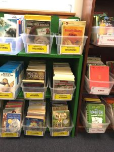Organizational bins for books in classroom