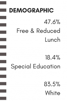 demographic on free & reduced lunch, special education, and background